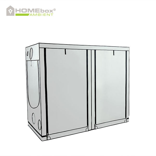 HOMEbox Ambient R240